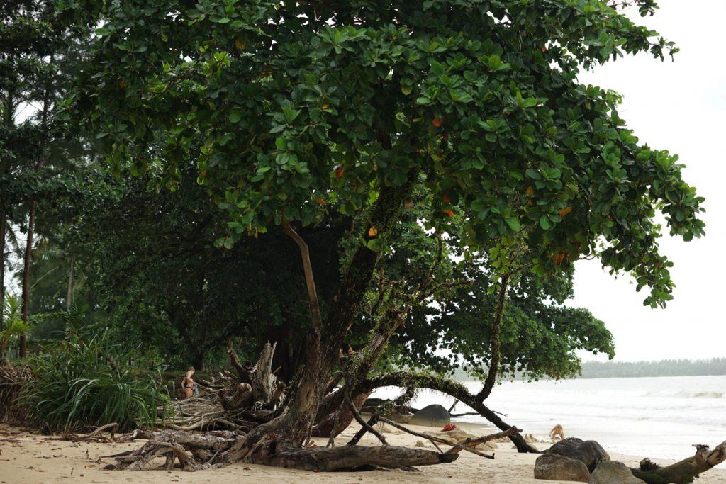 カオラック旅行記:サロジンのビーチ