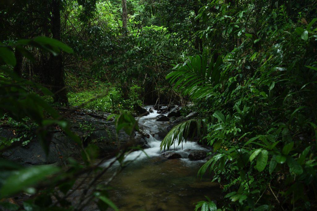 カオラック旅行記:サイルン滝